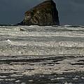 Close Haystack Rock by Susan Garren