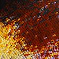 Extreme Close Up Of A Butterfly's Wing by Jaroslaw Blaminsky