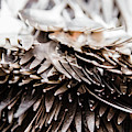 Close Up Of Heap Of Silver Forks by Ron Koeberer