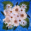 Close Up Of White Daisy Bouquet by Panoramic Images