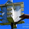 Closer Look At The Birdhouse by Tina M Wenger