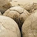 Closeup Of Famous Spherical Moeraki Boulders Nz by Stephan Pietzko