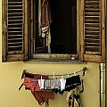Clothes Dryer by Curtis Dale