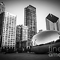 Cloud Gate Bean Chicago Skyline In Black And White by Paul Velgos