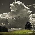 Cloud No.9 by Edmund Nagele
