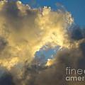 Cloud Series II - L by Robert Birkenes