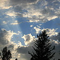 Cloud Shadows by Betty-Anne McDonald