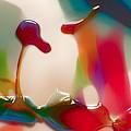 Cloud Talking by Omaste Witkowski