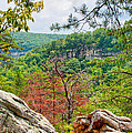 Cloudland Canyon State Park Georgia by John M Bailey