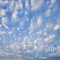 Clouds by David Davis