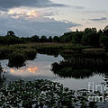 Clouds Over Green Cay Wetlands by Mark Newman