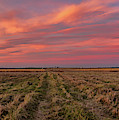 Clouds Over Landscape At Sunset by Panoramic Images
