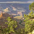 Cloudy Bright Angel Trail II by Ricky Barnard
