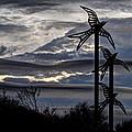 Cloudy Day 8 by Jacklyn Duryea Fraizer