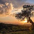 Cloudy Sunset by Avi Shahar
