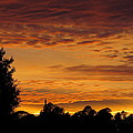 Cloudy Sunset by Zina Stromberg