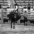 Clown Watches Bronc Bw by C H Apperson