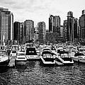 coal harbour marina and high rise apartment condo blocks in the west end Vancouver BC Canada by Joe Fox
