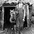 Coal Miner & Mule 1940 by Granger
