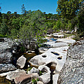 Coarsegold Creek Bed In Park Sierra-ca by Ruth Hager