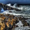 Coast 6 by Ingrid Smith-Johnsen
