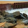 Coast Of Carolina by Debbi Granruth