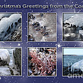 Coastal Christmas by Randi Grace Nilsberg