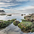 Coastal Colors by Jon Glaser