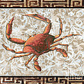 Coastal Crab Decorative Painting Greek Border Design By Madart Studios by Megan Duncanson
