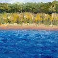 Coastal Dunes 2.0 by Michelle Calkins