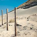 Coastal Dunes In Holland 2 by Jenny Rainbow