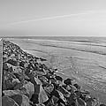 Coastal Lines by Betsy Knapp