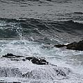 Coastal Maine 3 by Susan Feeley