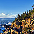 Coastal Maine Landscape. by John Greim