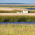 Coastal Marshlands With Old Fishing Boat by Bill Swindaman