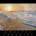 Coastal Paradise by Betsy Knapp
