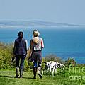 Coastal Path Walk by Susie Peek