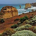 Coastal Vista by Harry Spitz