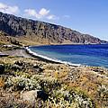 Coastline Of Hierro Island by Karol Kozlowski