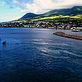 Coastline Of St Kitts by AE Jones