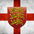 Coat Of Arms And Flag Of England by Serge Averbukh