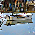 Cobb Reflections by Susie Peek