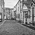 B And W Cobbles by Susan Leonard