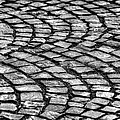 Cobblestone by John Magyar Photography