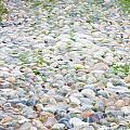 Cobblestones by Natalie Rotman Cote