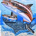 Cobia On Rays by Carey Chen