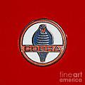 Cobra Emblem by Dennis Hedberg
