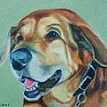 Happy Hound by Jill Ciccone Pike