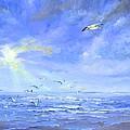 Cocoa Beach Birds