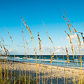 Cocoa Beach by Raul Rodriguez